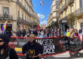 Mobilisation à Montpellier contre la loi Sécurité Globale